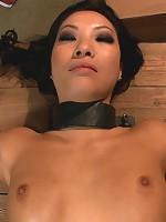 America's Sweetheart: Blackmailed and Defiled!!! Starring Asa Akira