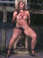 FelonySomeone's Mom squirting like a slut.