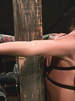 Mason MooreHuge Tits, Huge Orgasms.